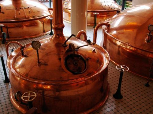 beer tasting tour3
